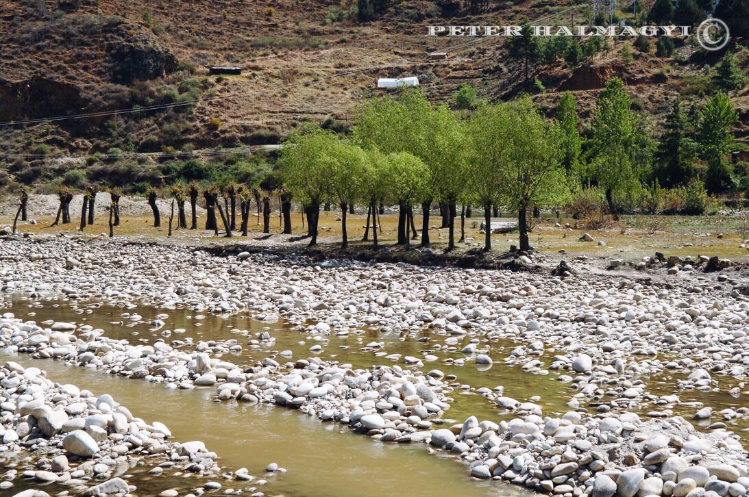 """Bután: un país """"feliz"""" y que no contamina watermarked-2018-02-24-2359.JPG"""