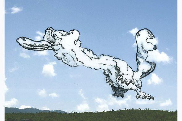 Hata un ornitorrinco que parece volar en el cielo.
