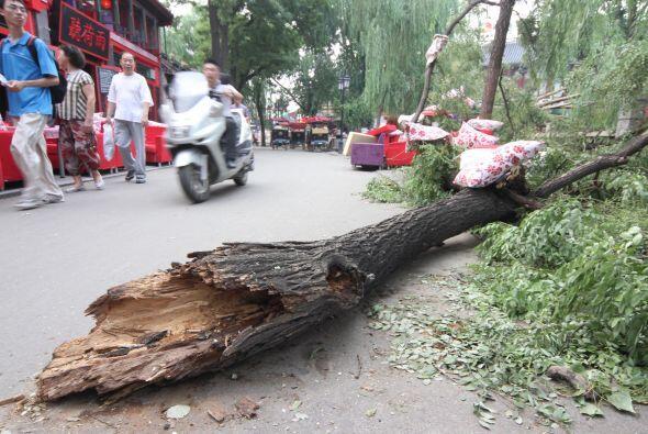 La televisión local difundió este jueves imágenes de la devastación que...