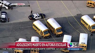 Adolescente muerto en autobús escolar