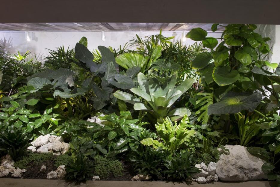 Arte verde para sanar la urbanización Internal Garden 1hotel_3.jpg