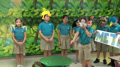 Club de libros: estudiantes de la escuela Downtown Doral aprenden valores con la fábula 'La liebre y la tortuga'