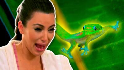 Seis maldiciones y dos gritos: Kim Kardashian en su momento aterrador pero absurdo durante una entrevista
