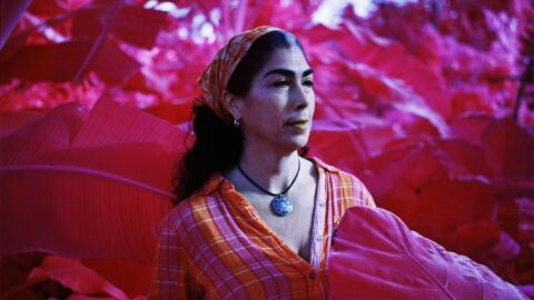 Karina Zuñiga, Líder de la ONG Siempre Verde Puerto Rico.