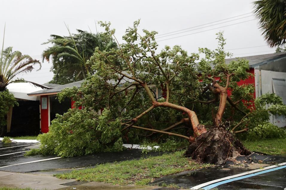 Irma Miami