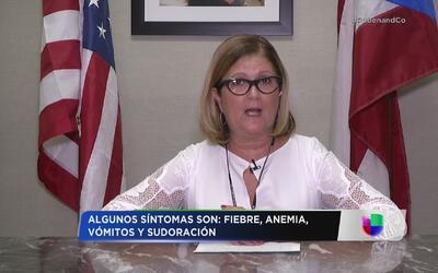 Departamento de Salud confirma 14 casos de malaria en Puerto Rico