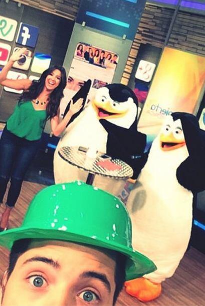 'Buenos días, ya desde la casita más happy happy con los #PenguinsOfMada...