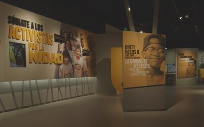 Exhibición en el Museo de California reconocerá la historia de la lucha...