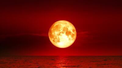 Ritual para la luna de sangre