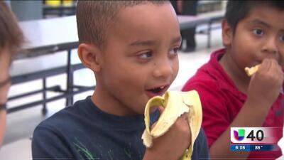 ¿Qué pasará con los estudiantes que dependen de la comida escolar en caso de protesta?
