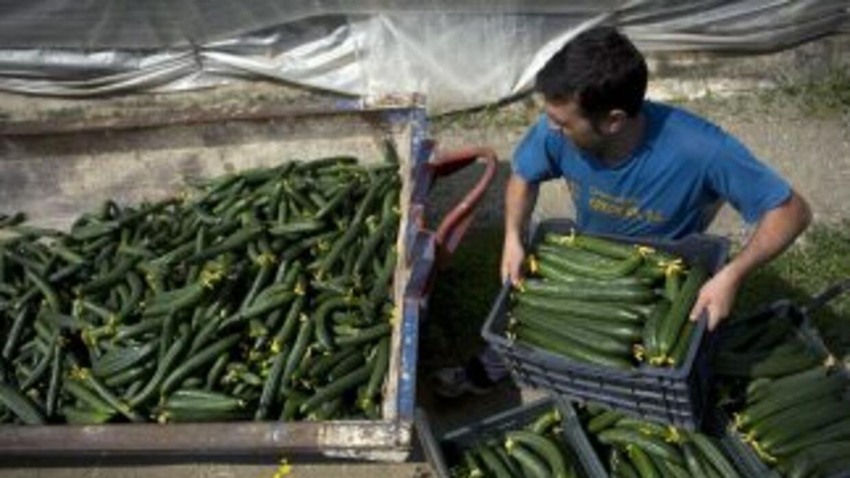 Agricultores españoles se han visto gravemente afectados por el brote de...
