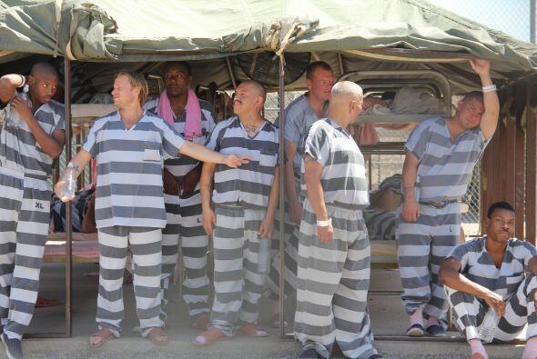 En el verano, los reos en la cárcel de carpas del alguacil Joe Arpaio su...