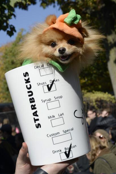 Para los amantes del café, qué tal un vaso de 'Pumpkin Spi...