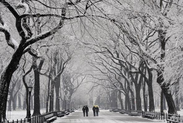 Una tormenta de nieve con vientos lacerantes dejó el martes varad...
