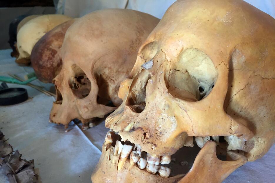 Descubren en Egipto una tumba de 3,000 años de antigüedad  Egipto3.JPG