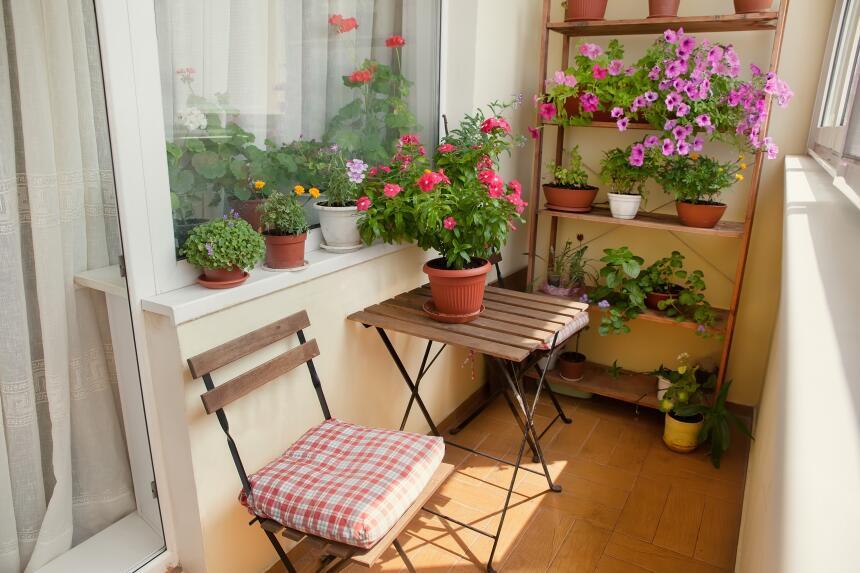 terraza decoracion tips