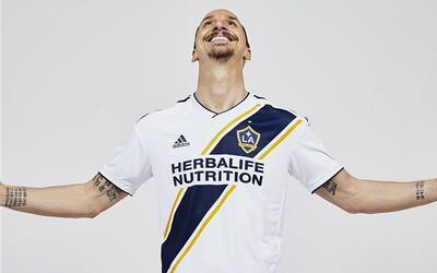 How To Start A Family Garden With Your Kids! rsz-zlatan-la-galaxy.jpg
