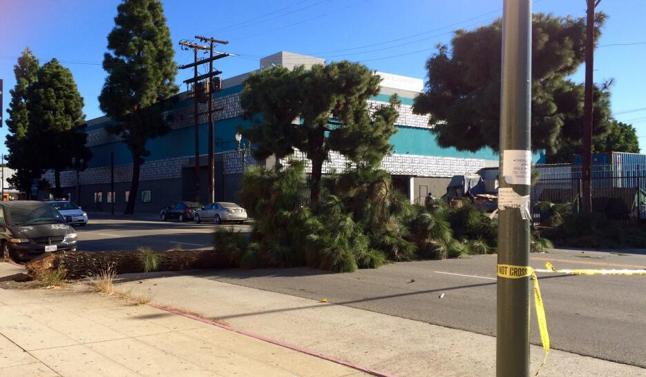 Residentes del sur de California dieron inicio a la semana con la presen...