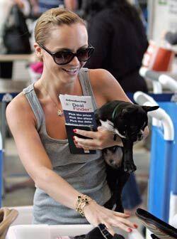 'Ramon' es el bulldog francés negro que Christina Ricci trata como a su...