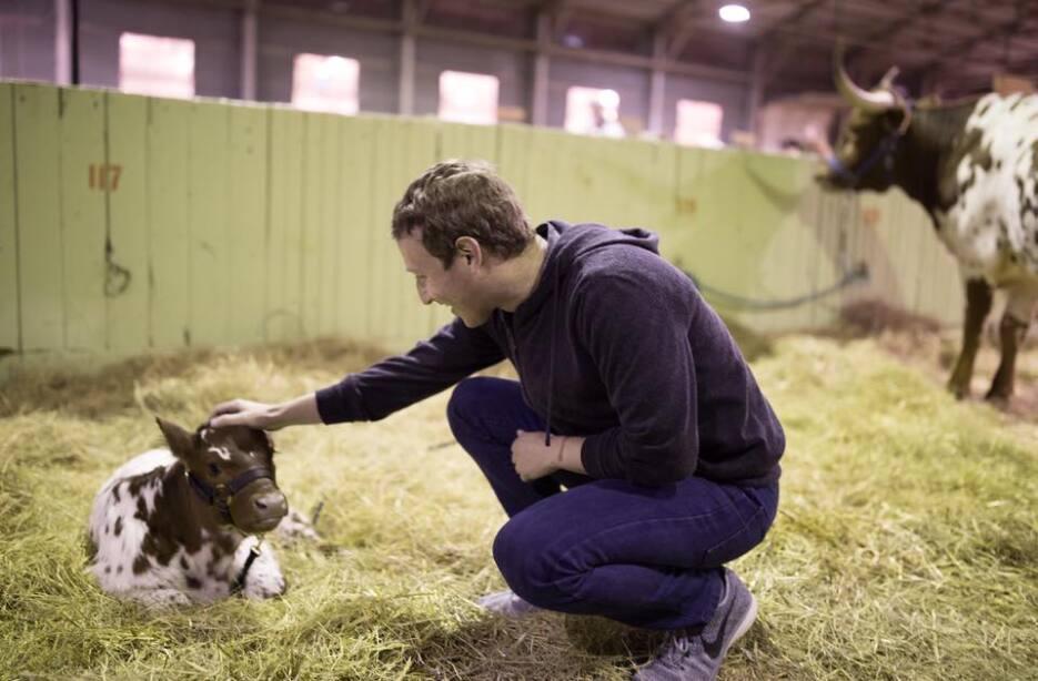 Zuckerberg ha realizado varios viajes en lo que llevamos de año. En febr...