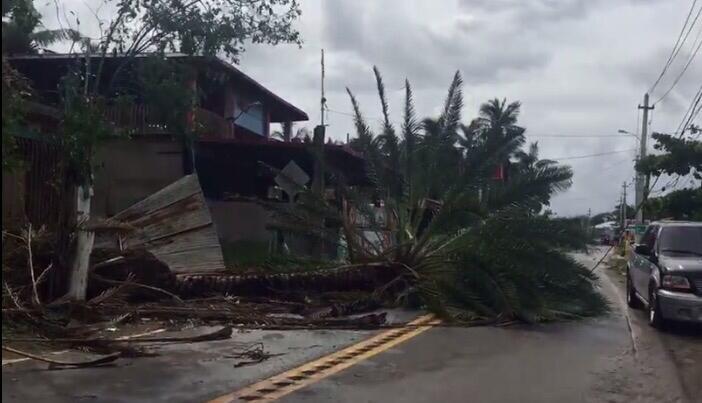 La reportera de Despierta Puerto Rico, Maricarmen Ortiz, visitó la zona...