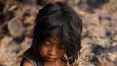 FAO pronostica aumento del hambre en América Latina por el desempleo 1cd...