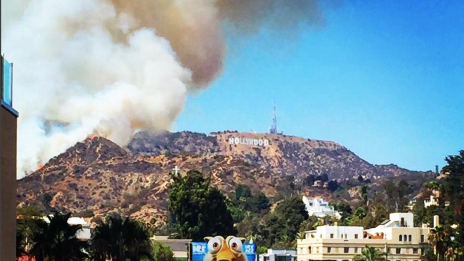 Ardieron alrededor de 14 acres.