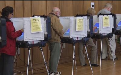 """Que no haya excusa para salir a votar"": organización Brown Issues"
